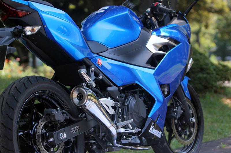 2018~Ninja250 (2BL-EX250P) PURESPORT TwoTail